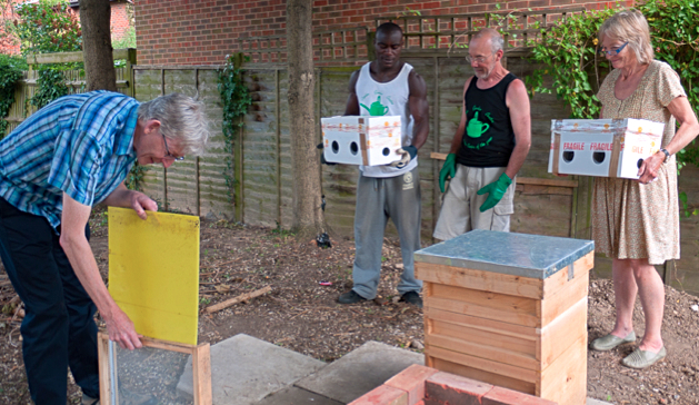 EVTRA volunteers, Camden Garden Centre staff, and bees (not pictured, but buzzing curiously in the boxes.
